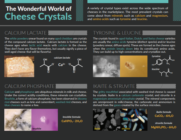 cheese crystals infographic