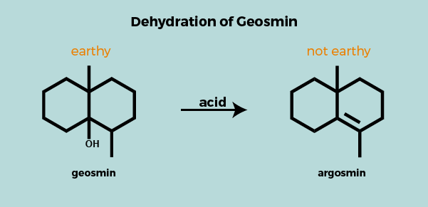 geosmin mechanism