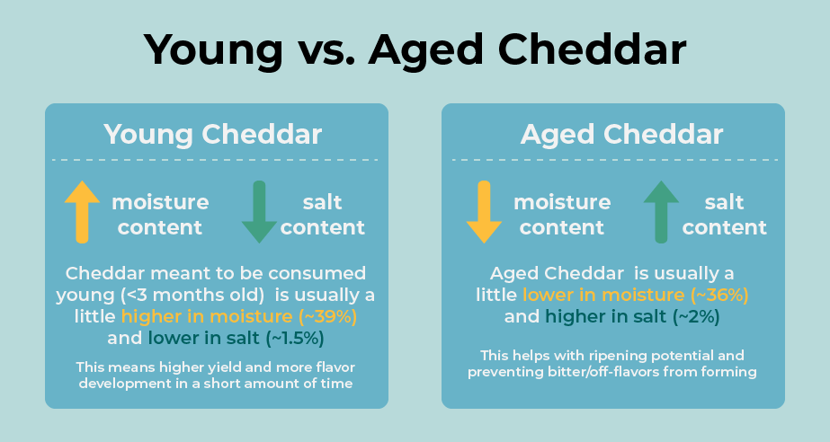 aged young sharp cheddar difference